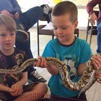 boys-and-snake